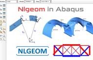 NLGEOM در آباکوس چیست؟